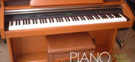 piano-dien-cu-kawai-pw1000